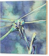 Dragonfly II Wood Print