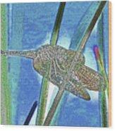 dragonfly Interior Wood Print