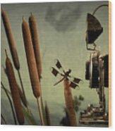 Dragonfly Wood Print by Mark Wagoner