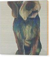 Drahthaar Amadeus Wood Print