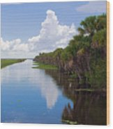 Drainage Canals Make Farming Possible In Florida Wood Print