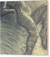 Dramatic 5 - Female Nude  Wood Print