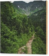 Dramatic Mountain Landscape With Distinctive Green Wood Print