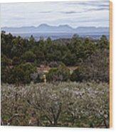 Draney Orchard Pano Wood Print