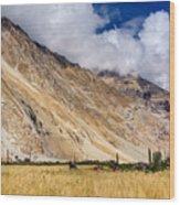 Drass Village Agriculture Kargil Ladakh Jammu And Kashmir India Wood Print