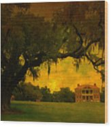 Drayton Hall Plantation In Charleston Wood Print