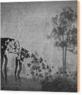 Dream 5111a Wood Print