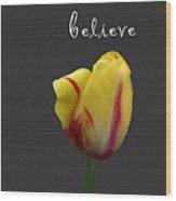 Dream Believe Achieve Wood Print