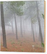 Dream Forest II. Living In A Dream... Wood Print