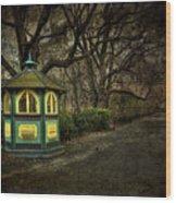 Dreamcatcher Wood Print