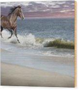 Dreamer On The Beach Wood Print