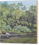 Dreaming By The Creek Wood Print