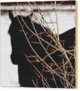 Dreaming Of Black Beauty Wood Print