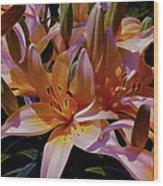 Dreaming Of Lilies 5 Wood Print
