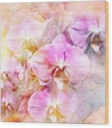Dreaming Of Orchids Wood Print