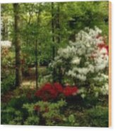 Dreaming Of Spring Wood Print by Sandy Keeton