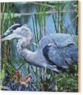 Dreamland Great Blue Heron Wood Print