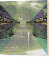 Dreamtime Gondwanaland Wood Print