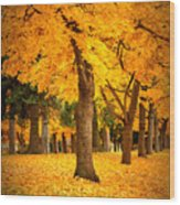 Dreamy Autumn Day Wood Print