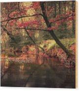 Dreamy Autumn Forest Wood Print
