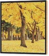 Dreamy Autumn Gold Wood Print