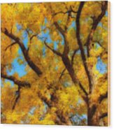 Dreamy Crisp Autumn Day Wood Print
