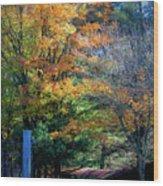 Dreamy Fall Scene Wood Print
