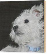 Dreamy Puppy Wood Print
