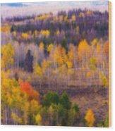 Dreamy Rocky Mountain Autumn View Wood Print