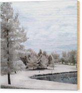 Dreamy Surreal Infrared Pond Landscape Nature Scene  Wood Print