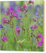 Dreamy Wildflowers Wood Print