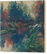 Drente Canal Wood Print
