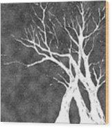 Dressed In Winter White Wood Print