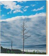 Drew County Bonanza Wood Print