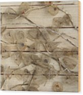 Dried Fruits Of The Cape Gooseberry Wood Print