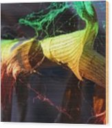 Dried Plants And Prisms #2 Wood Print