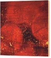 Dried Red Pepper Wood Print