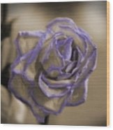 Dried Rose In Sienna And Ultra Violet Wood Print