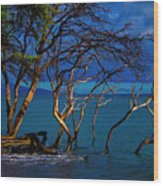 Driftwood 01 Wood Print