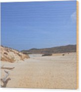 Driftwood Abandoned On A Beautiful Remote Beach In Aruba Wood Print