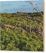 Driftwood Among The Naupaka  Wood Print