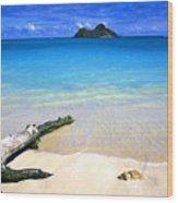 Driftwood And Islands Wood Print
