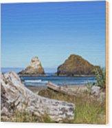 Driftwood And Rocks Wood Print