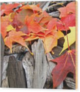 Driftwood Autumn Leaves Art Prints Baslee Troutman Wood Print