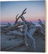 Driftwood Beach 1 Wood Print