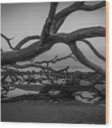 Driftwood Beach 4 Wood Print