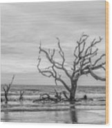 Still Standing In Black And White Wood Print