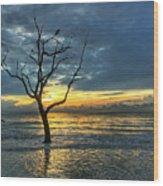 Driftwood Beach Sunrise Jekyll Island Georgia Wood Print