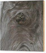 Driftwood Break Wood Print