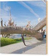 Driftwood C141351 Wood Print